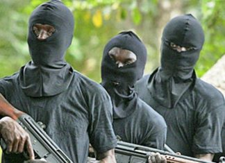 Militants attack Niger