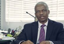 Professor Adedoyin Salami, chairman Economic Advisory Council