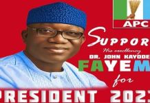 Ekiti local council chairman suspended over Governor Kayode Fayemi 2023 poster