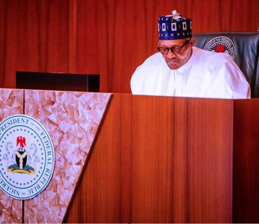 nddc A virtual meeting with former Heads of State presided over by President Buhari at the Council Chambers in the State House, Abuja land border anti-corruption protests land borders bandits