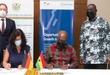 Hyundai and Kia to set up plants in Ghana
