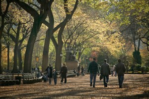 People walking on path in Central Park on sunny fall afternoon, New York, NY