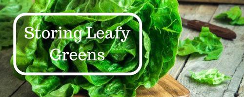 Leafy Green Storage