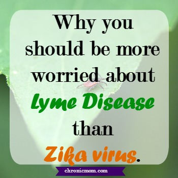 why you should be more worried about lyme disease than zika virus