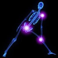 Skeleton joints