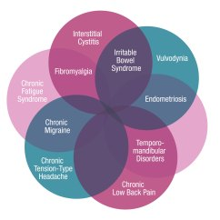 Fibromyalgia Pain Diagram Wiring For Amp And Sub Chronic Research Alliance About Copcs