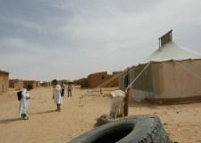 اندلاع الحرب بين البوليساريو والجزائر