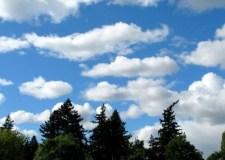 حالة الطقس ببلادنا ليوم غد الخميس 14 فبراير
