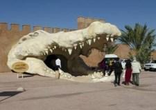 """أكادير: حديقة التماسيح السياحية تغني عرضها الترفيهي بفتح """"مغارة الثعابين"""""""