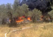 حريق مهول يأتي على هكتارات من أشجار الزيتون ويهدد منازل السكان