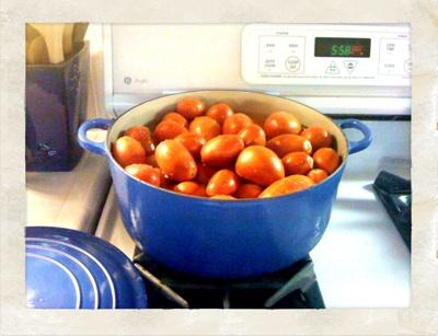 10q-tomates_2.jpg