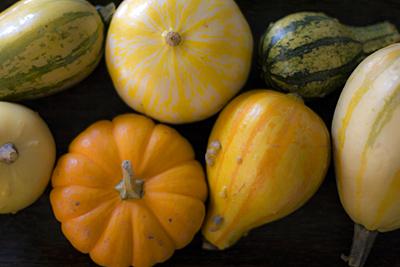 pumpkin-time_1S.jpg