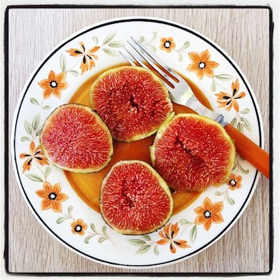figs-ag14.jpg