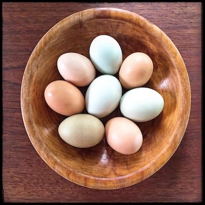 ovos-caipiras
