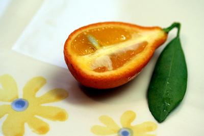 Indio_Mandarinquats_half_s.jpg