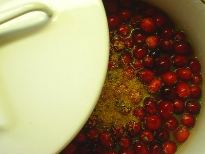 cranberrysauce2.JPG
