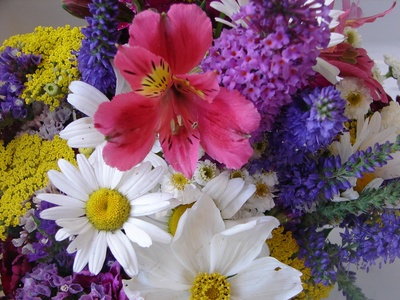 floresvariadas2.jpg