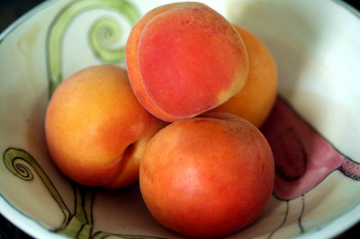 new_apricots_2s.jpg