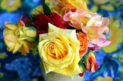 rosas_daqui_s.jpg