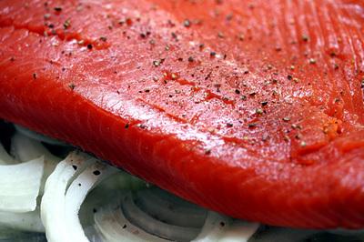 wild_salmon_onion_1S.jpg