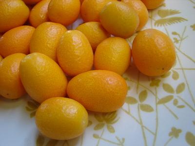 yellowkumquat.JPG
