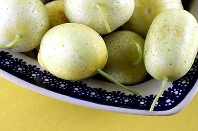lemon_cucumber_1S.jpg