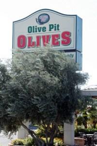olive_pit_3S.jpg