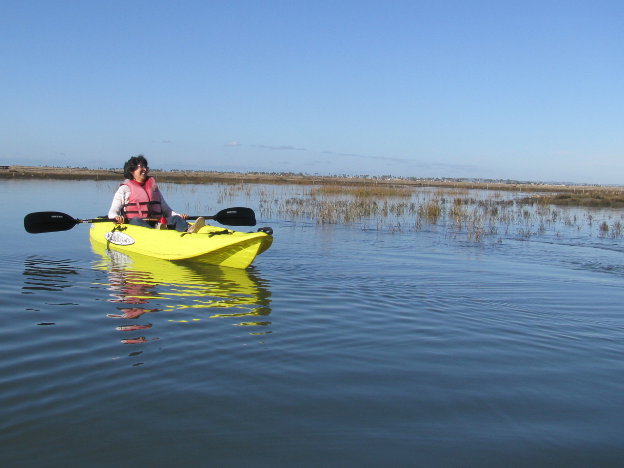 Kayaking southday wildlife
