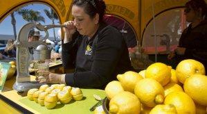 Chula Vista Lemon Festival
