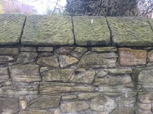 wall mortar 2