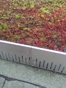Aluminium green roof edges allow drainage.