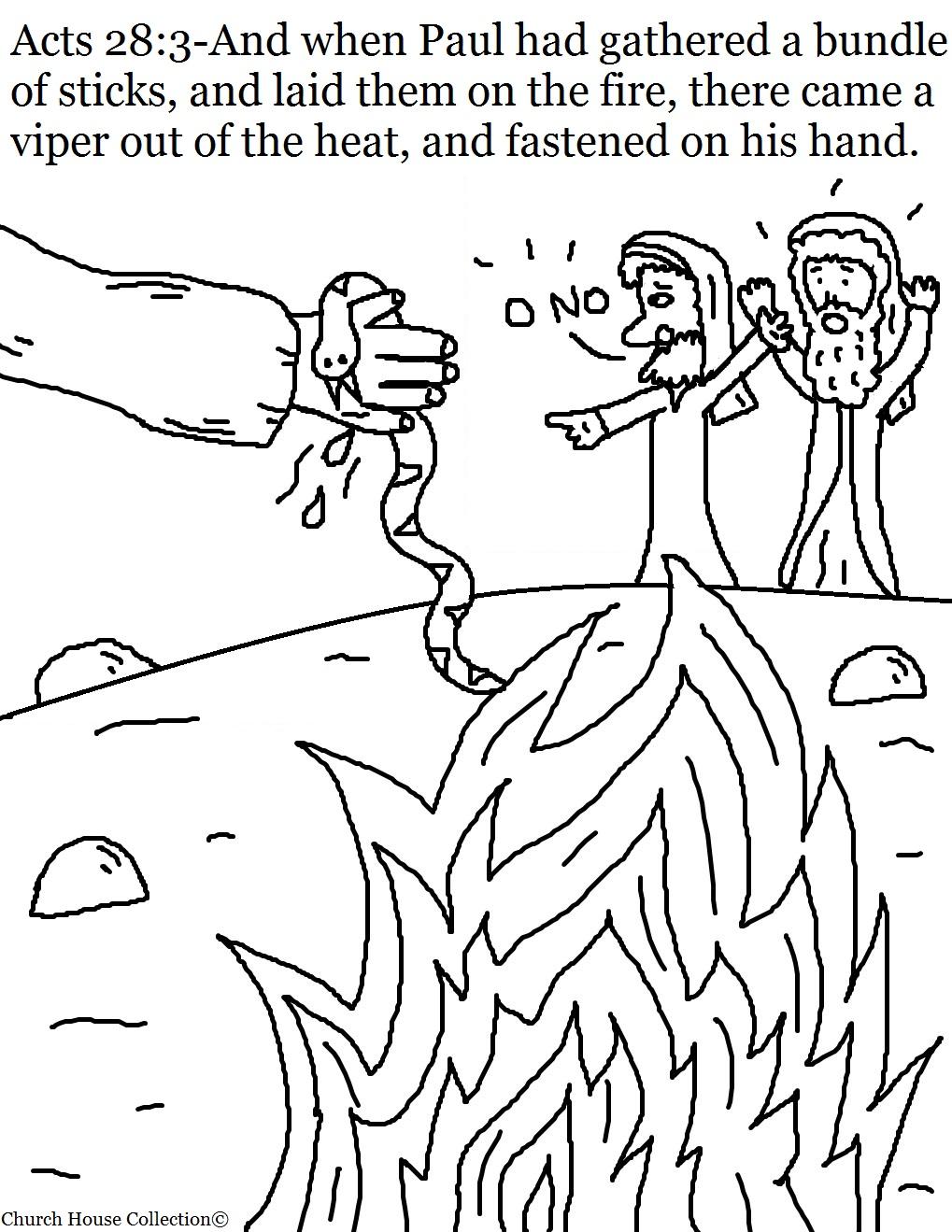 Paul Bitten By Viper Sunday School Lesson