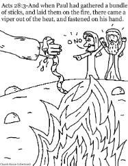 versbíblica: Paulo sacudiu a cobra para dentro do fogo