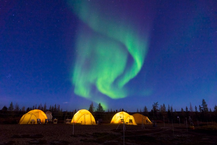 Tundra Camp under northern lights on the Arctic Safari. Jad Davenport photo.