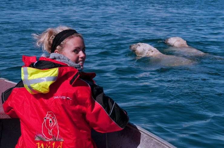 Karli Reimer being escorted across Hudson Bay by two polar bears. Dennis Fast photo.