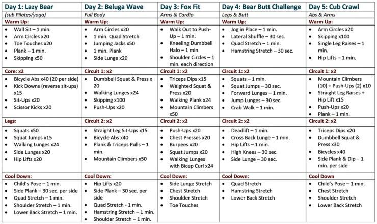 Polar Bear Safari Exercise Chart. Click image for full size.