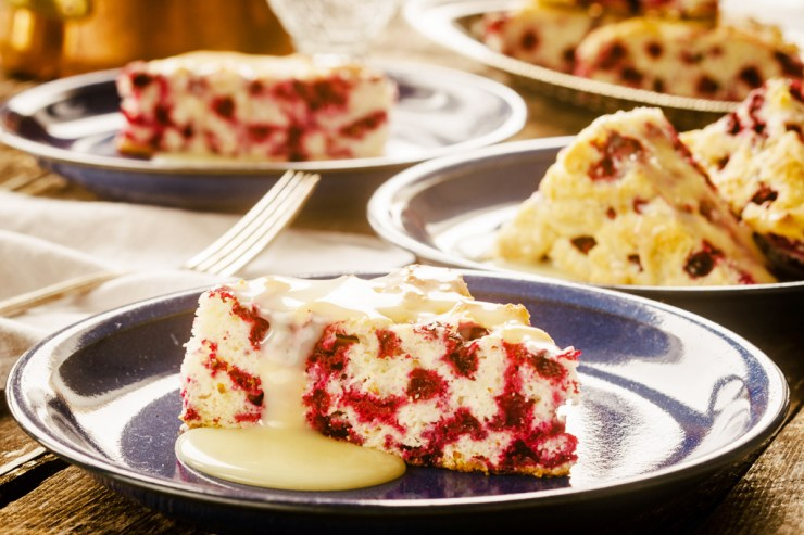 Wild Arctic Cranberry Cake with Warm Butter Sauce. Blueberries and Polar Bears Cookbooks. Ian McCausland and Shel Zolkewich photo.