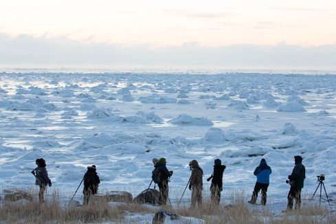 Guests and ice on Hudson Bay near Seal River Heritage Lodge. Leslie Rapp photo.