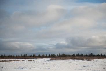 landscape-churchill-wild-nanuk-polar-bear-lodge