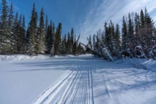 Winter Wonderland in the Arctic.