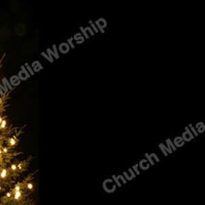 Christmas Tree V2 Black Christian Worship Background. High quality worship images for use to spread the Gospel and enhance the worship experience.