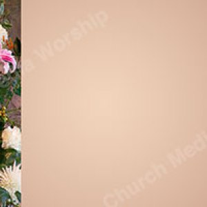 Flower arrangement Peach Christian Worship Background. High quality worship images for use to spread the Gospel and enhance the worship experience.