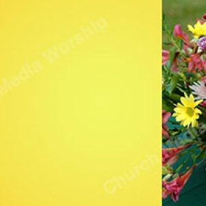 Flower arrangement V2 Yellow Christian Worship Background. High quality worship images for use to spread the Gospel and enhance the worship experience.