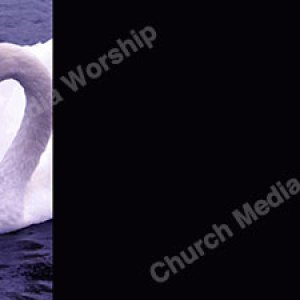 Love is All Around Christian Worship Background. High quality worship images for use to spread the Gospel and enhance the worship experience.