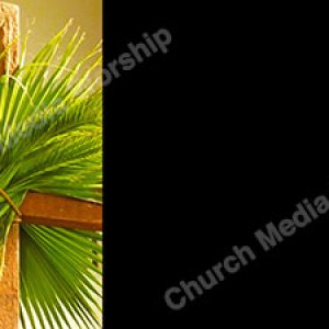 Palm leaves on the Cross Black Christian Worship Background. High quality worship images for use to spread the Gospel and enhance the worship experience.