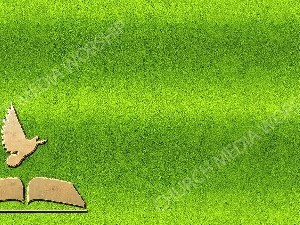 Bible Dove Symbol Green Christian Background Images HD