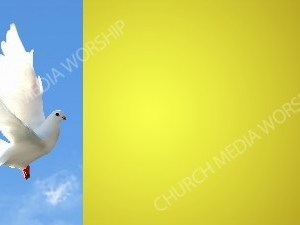 Dove in flight Yellow 2-3rds Christian Background Images HD