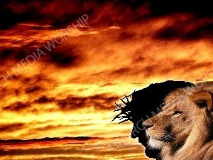 The Lion in Christ - Dark Clouds Christian Worship Background. High quality worship images for use to spread the Gospel and enhance the worship experience.