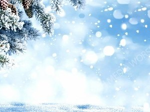 Winter Background Pine Cones and evergreen Branches Christian Worship Background. High quality worship images for use to spread the Gospel and enhance the worship experience.