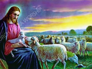 The good shepherd V2 Christian Worship Image. High quality worship images for use to spread the Gospel and enhance the worship experience.